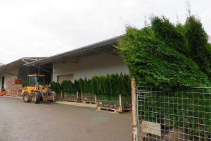 zahradnictvi_brabec_15